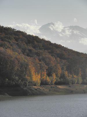 trésor des hautes Pyrenées 3