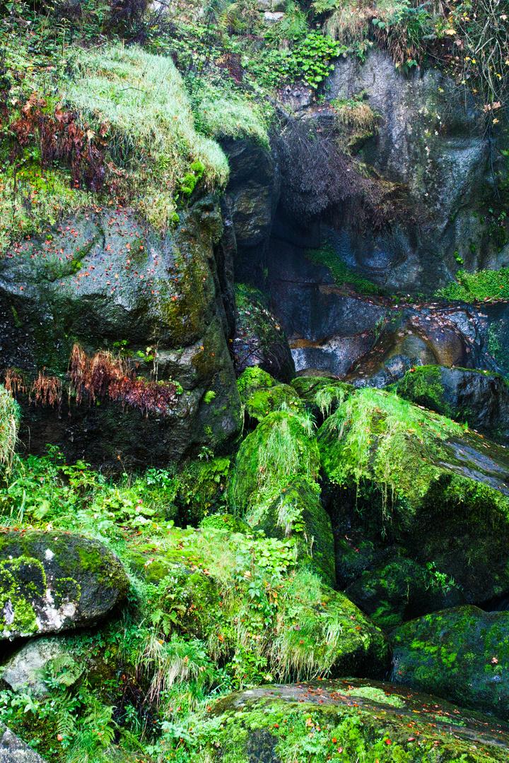 Triberger Wasserfälle 7