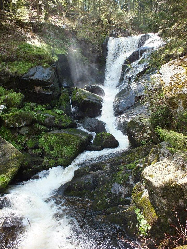 Triberger Wasserfall 1
