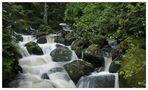 Triberger Wasserfall #2