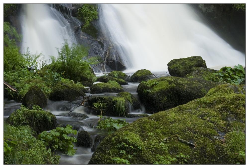 Triberger Wasserfall #5