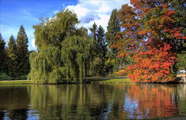 Trier - Nells Park