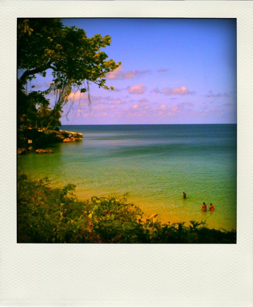Trinidad & Tobago Harinezumi-Polaroid Series