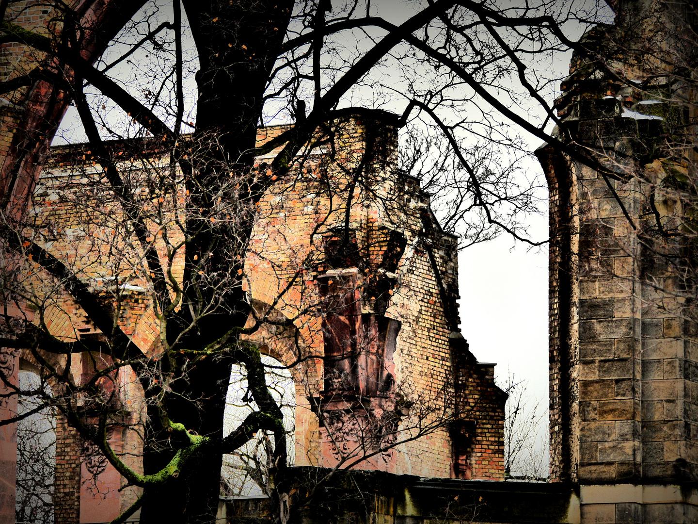 Trinitatiskirche in Dresden 2