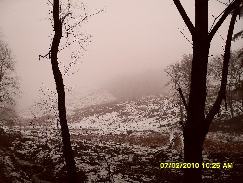 Trist und kahl - der Winter