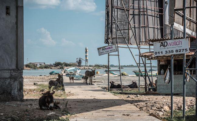 Tristes Tropiques ~ Tamil Eelam