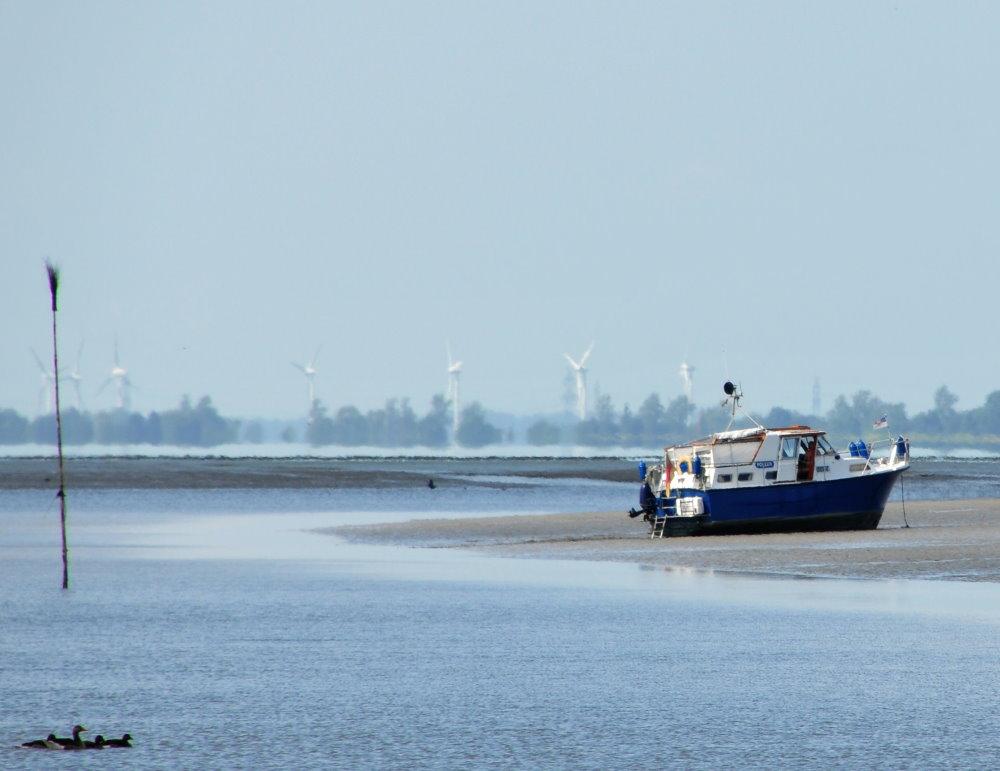 trocken gefallen an der Elbe