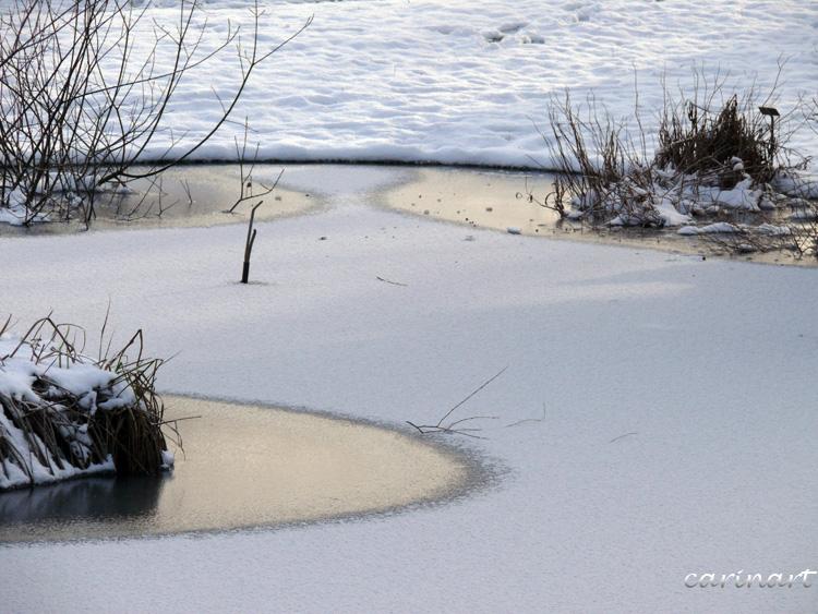 Trois ronds gelés