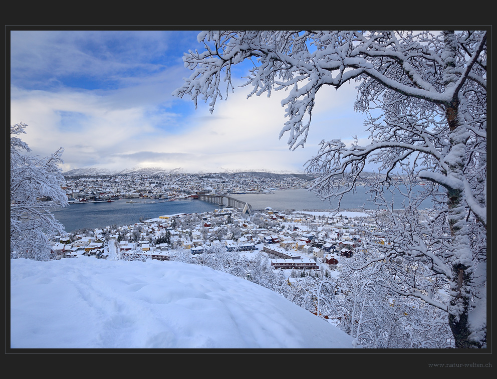 Tromsö im Winter