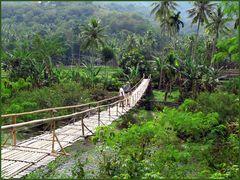 Tropenparadies Indonesien