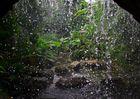 Tropenwasserfall
