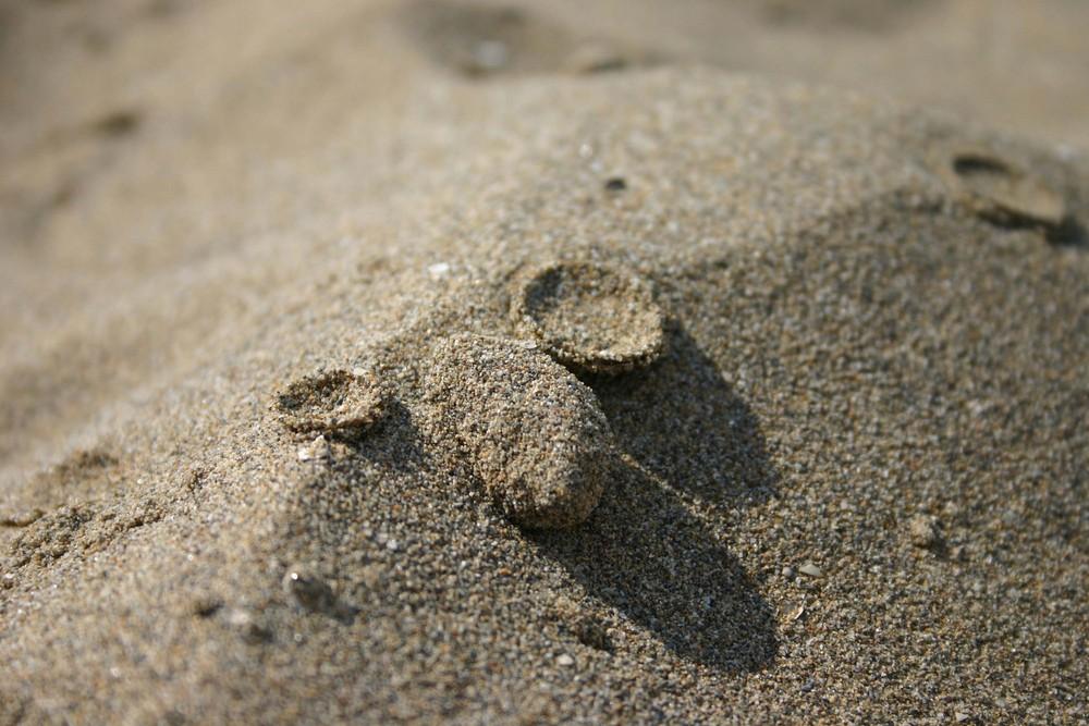 Tropfen auf den heissen Sand
