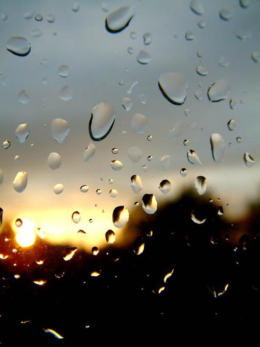 Tropfen bei Sonnenuntergang