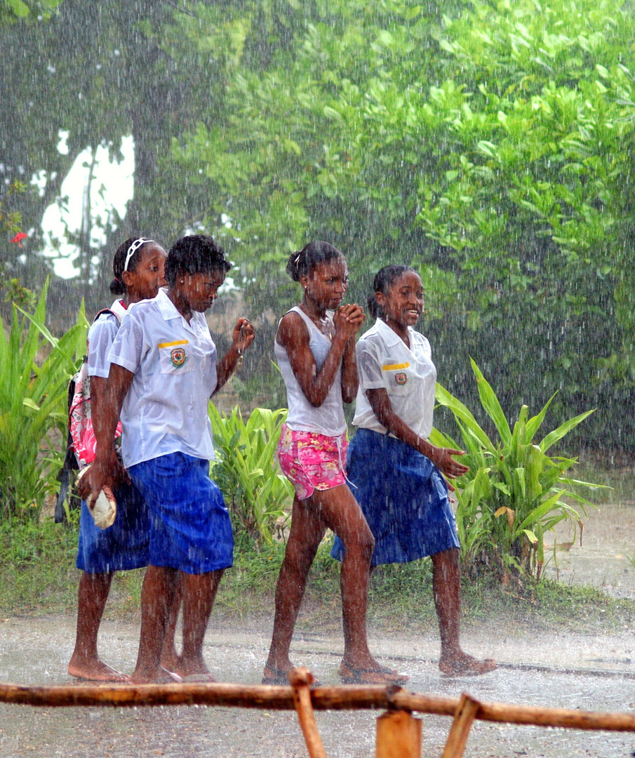 Tropic rain