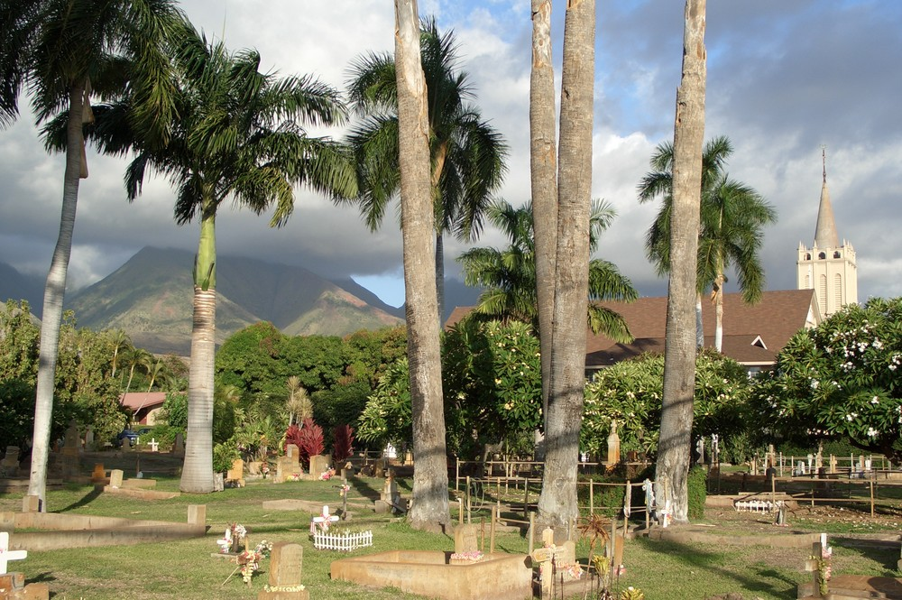 Tropical Eternity
