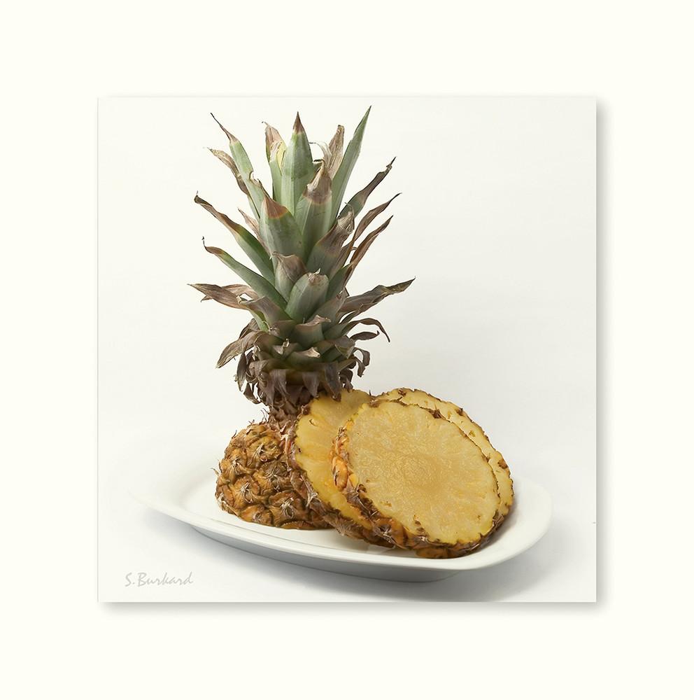 >>> Tropical-Fruit II