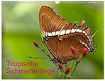 Tropische Schmetterlinge - Zu kaufen als Kalender