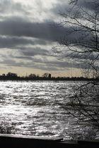 Trouble - ein kalter Winternachmittag am Rhein Wesel