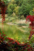 trouée d'automne