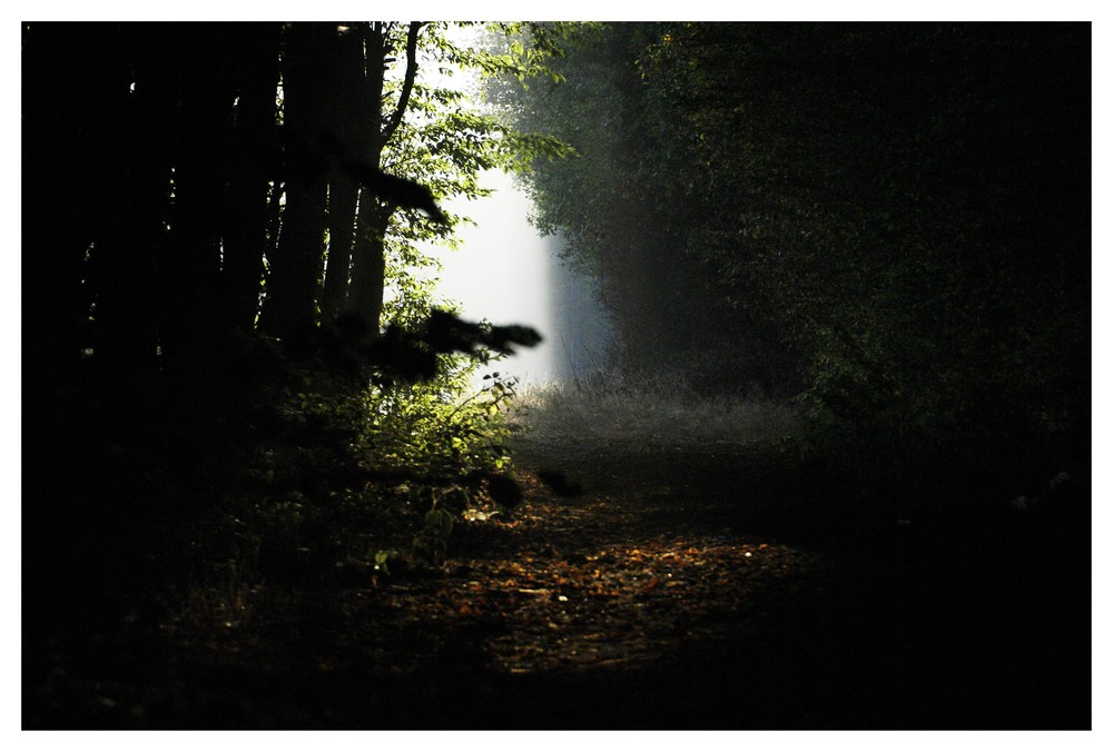 trouée de lumière.