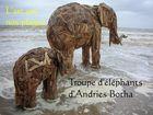Troupe d'éléphants d'Andries Botha (Mer du Nord, Belgique, 2006)