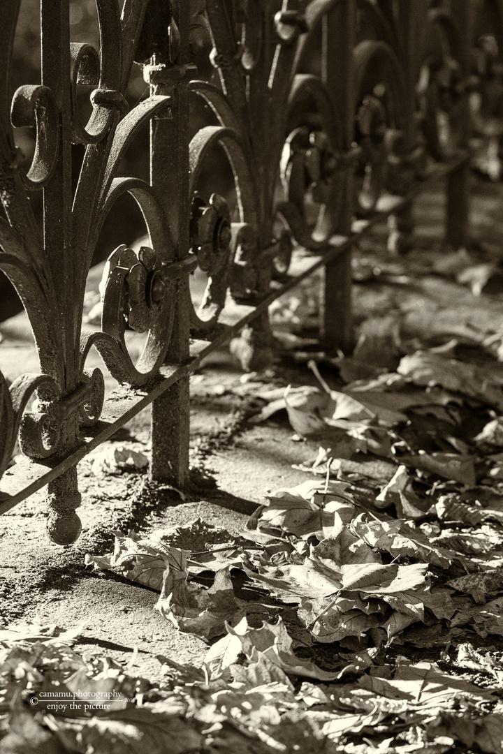 Trüber Herbst