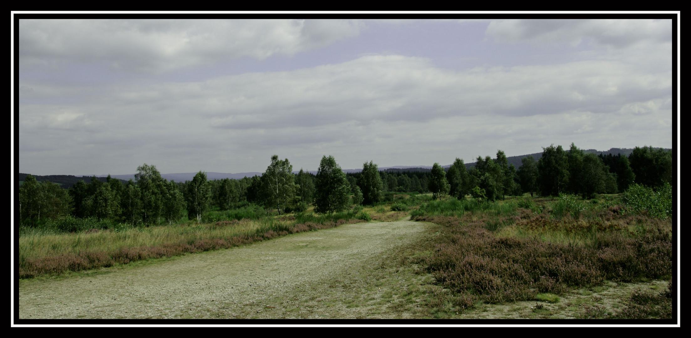 Trupbacher Heide -1-