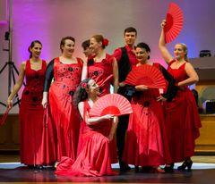 TS Aire Flamenco - Flamenco Show (1)