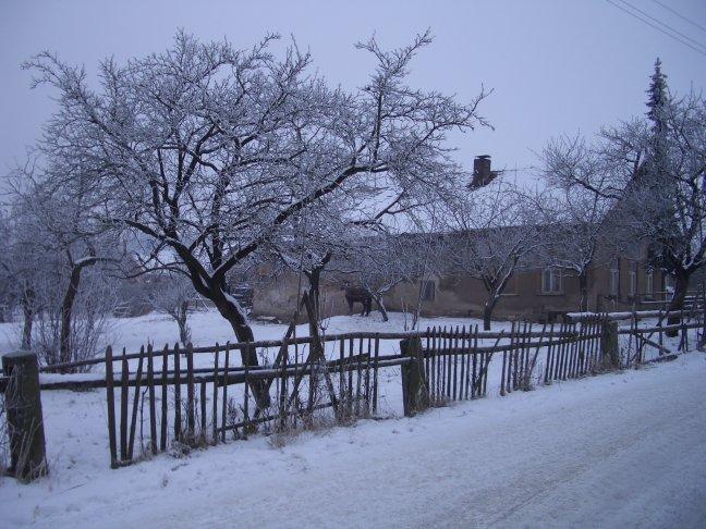 Tschechischer Bauernhof 2004