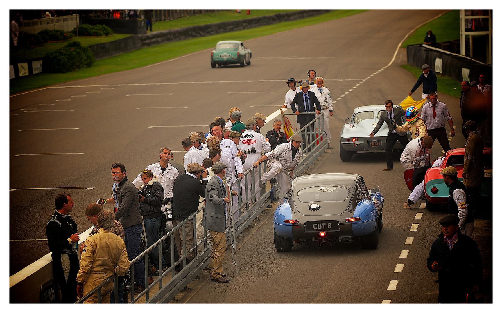 TT Celebration Race....