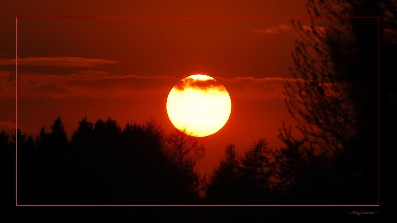 Tête de moine solaire