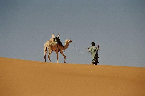 Tuareg mit Kamel unterwegs