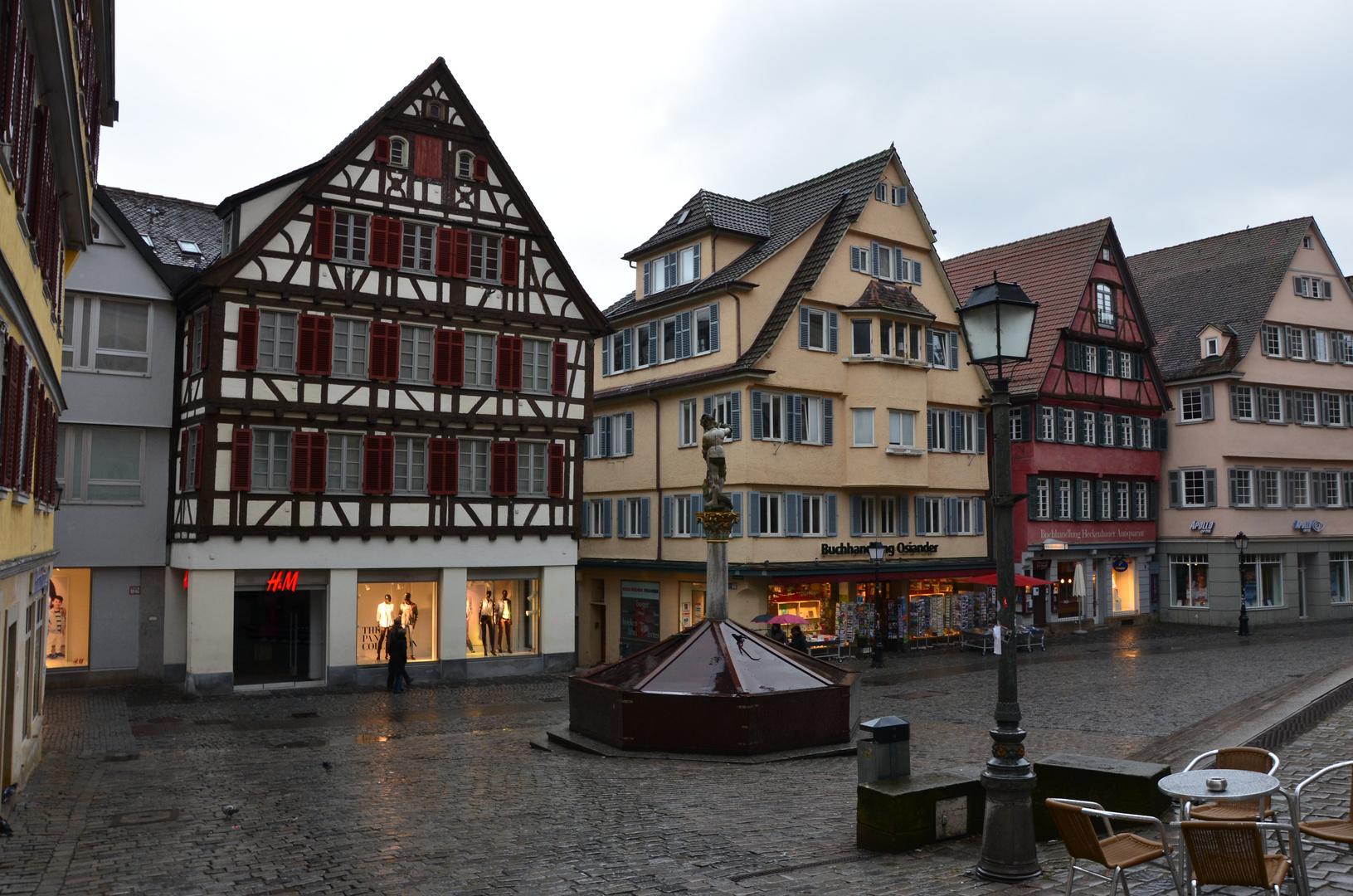Tübingen bei Regenwetter
