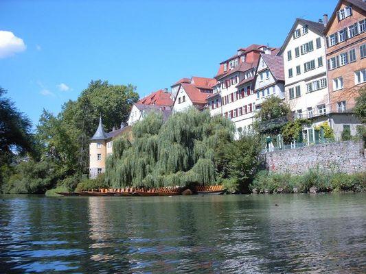 Tübingen original