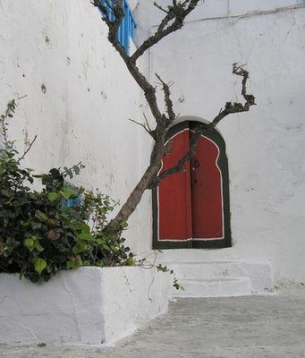 Türen in Sidi Bou Said