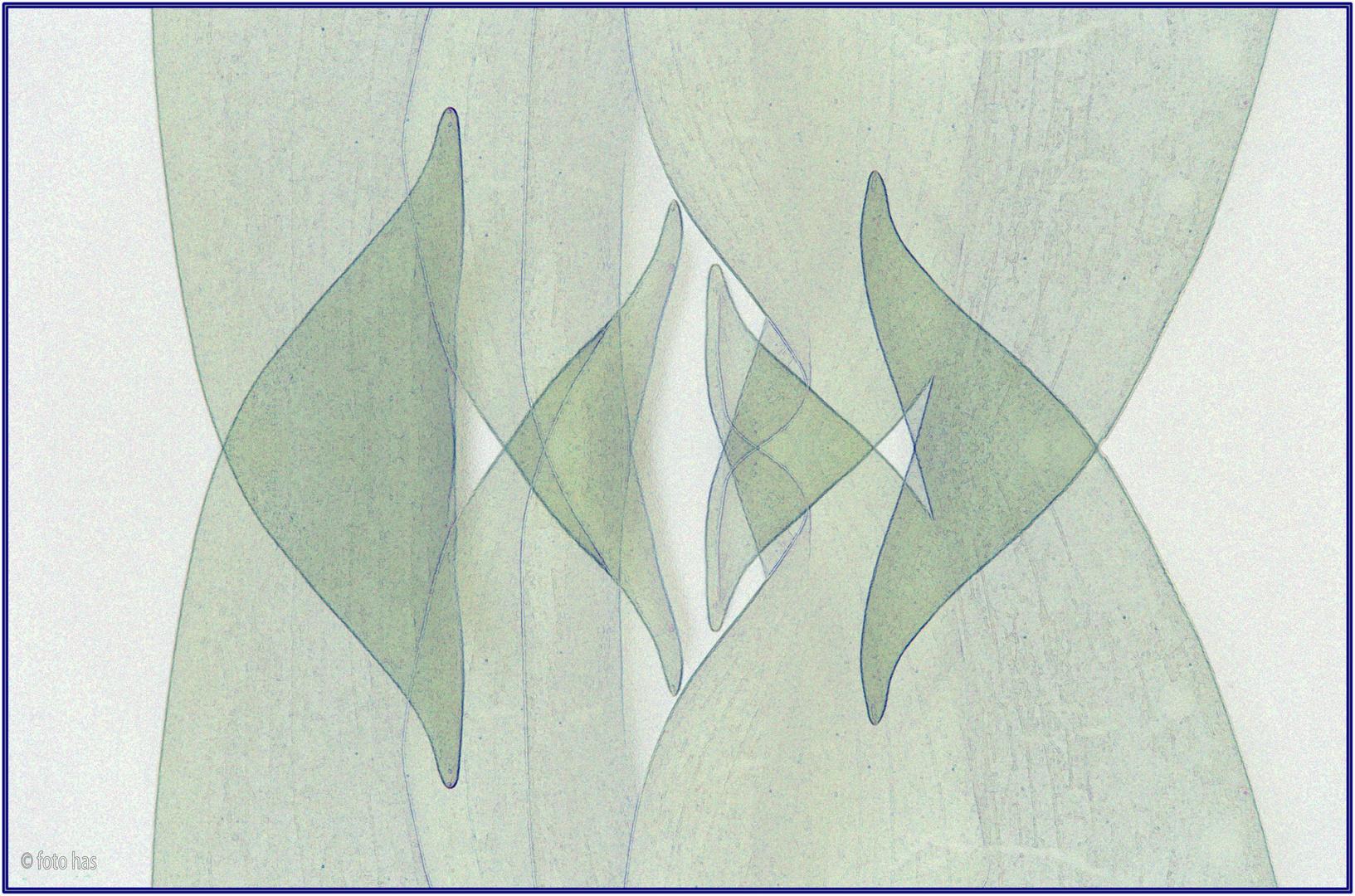 Tulip art nr. 3