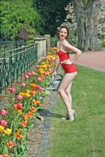 Tulip Gardener