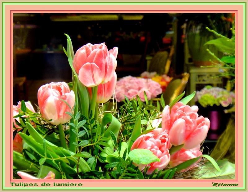 Tulipes de lumière