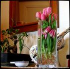 Tulipes prisonnières