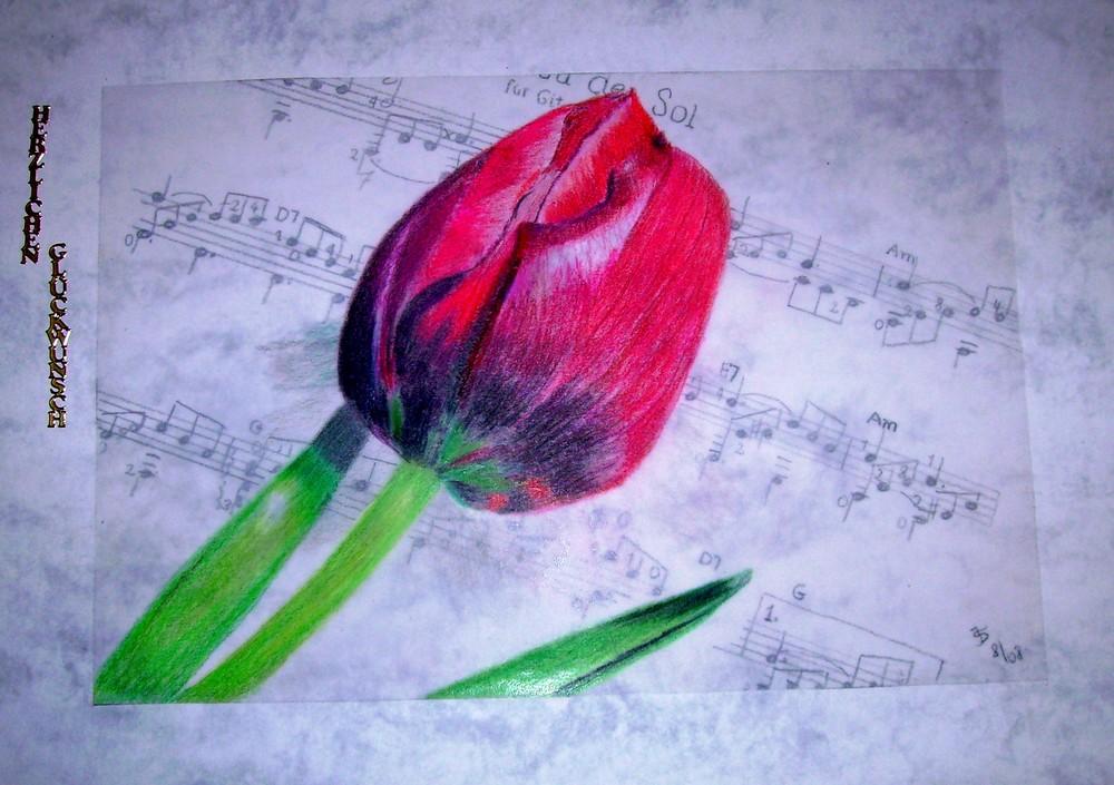 Tulpe auf Noten