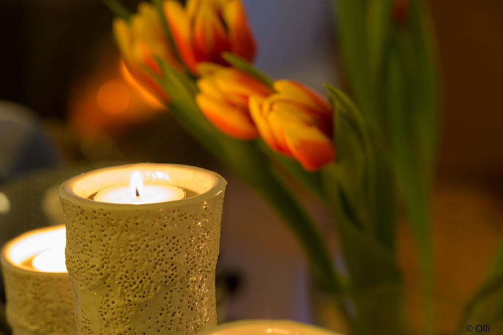 Tulpe + Kerze ...