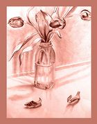 tulpen ..