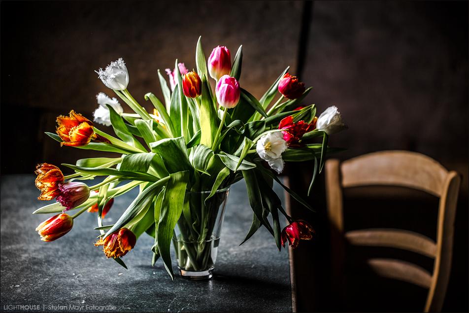 Tulpen auf Tisch vor Wand