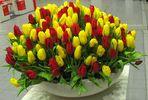 Tulpen in Karlsruhe Messe