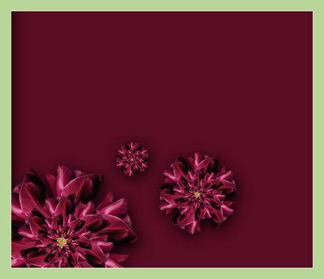 tulpenkitsch