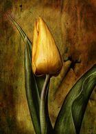 Tulpenmalerei