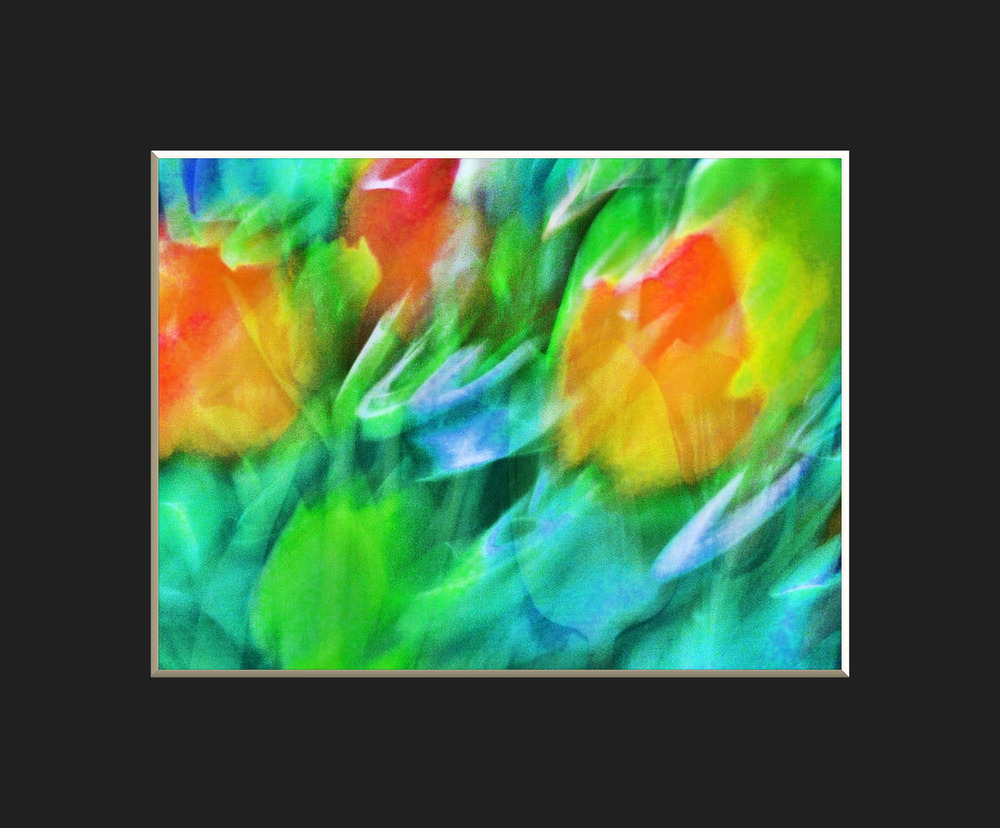 Tulpenreigen