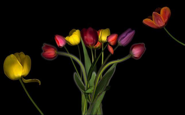 Tulpenscan zum Muttertag