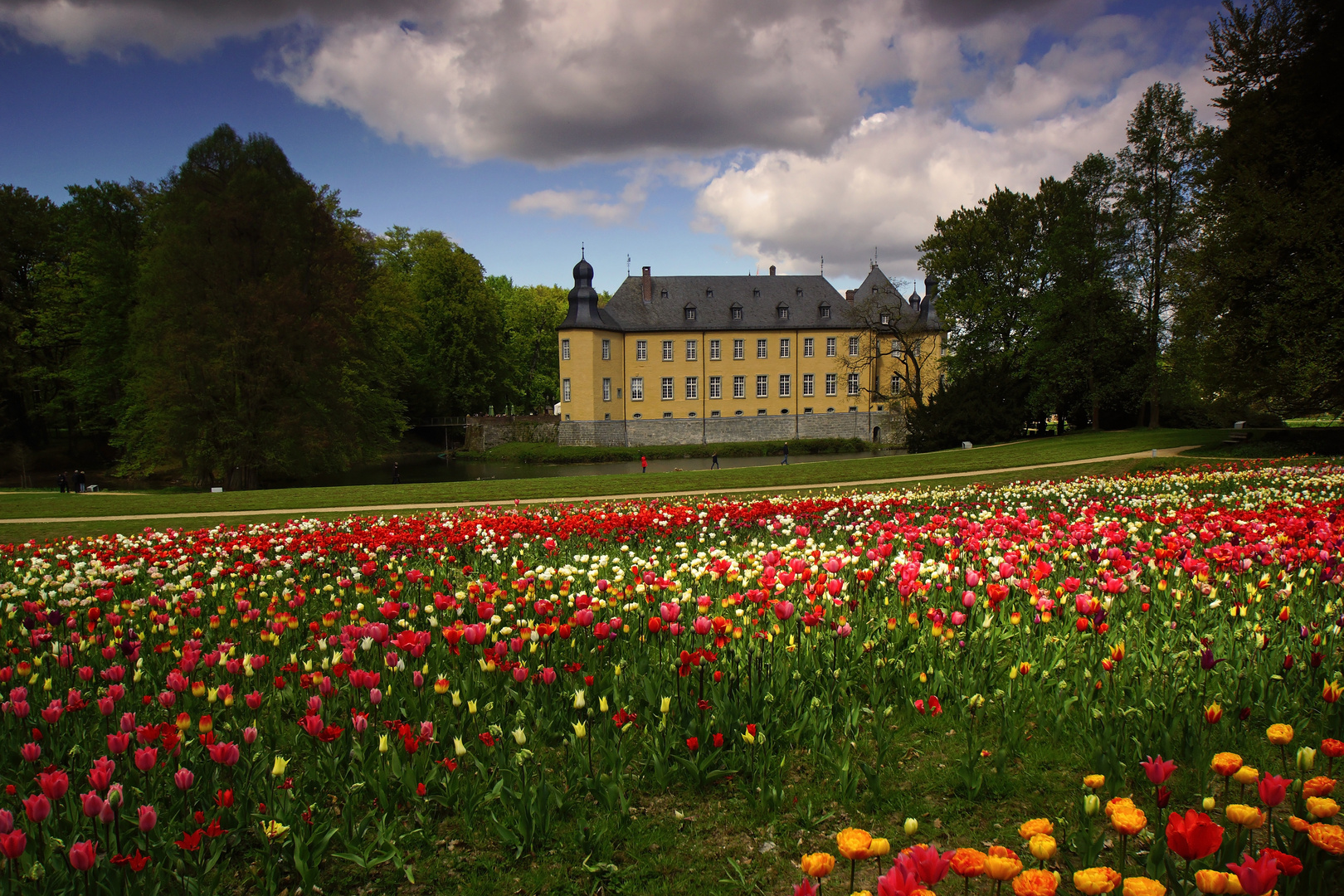 Tulpenvielfalt im Dycker Schlossgarten 1
