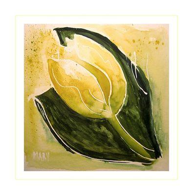 Tulpenzeit in Gelb